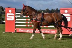 KreismeisterschaftenFahren2020-32