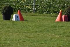 KreismeisterschaftenFahren2020-78